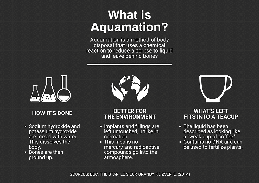 An infographic detailing how aquamation is done.